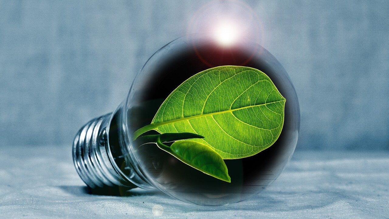 Kursus: Bæredygtig strategi giver vækst til din virksomhed
