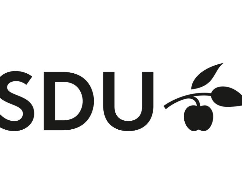 SDU Praktik- & Projektdag